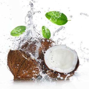 Σύνδεσμος Chemco Βελτιωτικό Οσμής Και Γεύσης Καρύδα 100gr