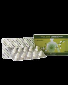 Mastihatherapy Kαψουλες Μαστιχας 350Mg 30 Caps
