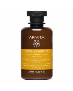 Apivita Intense Repair Σαμπουάν Θρέψης & Επανόρθωσης Με Ελιά & Μέλι 250ml