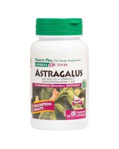Natures Plus Herbal Actives Astragalus 450mg Συμπλήρωμα Με εκχύλισμα Αστραγάλου 60 Φυτικές Κάψουλες